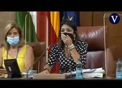 Enlace a Una rata se cuela en el Parlamento de Andalucía