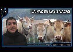 Enlace a ¿Por qué Francia le da 3 vacas a España cada año?