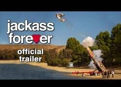 Enlace a El trailer de Jackass Forever, vuelve la saga más dolorosa