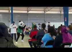 Enlace a El baile de Pandemio, el panda que baila en los centros de vacunación de México