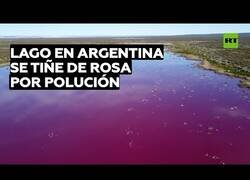 Enlace a Un lago argentino se tiñe de rosa por la polución