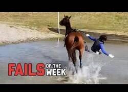 Enlace a Recopilación de los fails de la semana