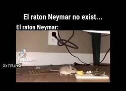 Enlace a El ratón Neymar