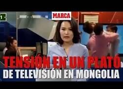 Enlace a Dos hombres se pelean en mitad de un telediario en Mongolia