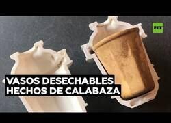 Enlace a Diseñan vasos desechables hecho de frutos