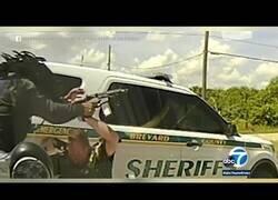 Enlace a Policías paran a un conductor y este les sorprende con una metralleta