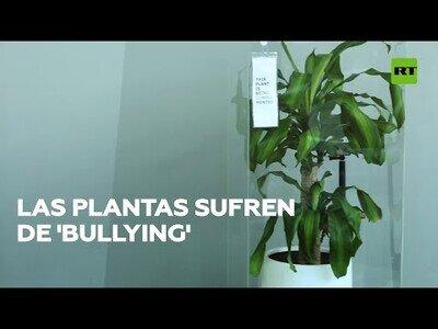 La plantas también pueden sufrir de 'bullying'