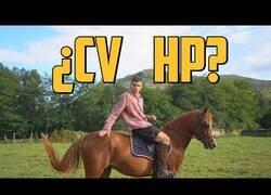 Enlace a ¿Cuántos caballos de potencia tiene un caballo?