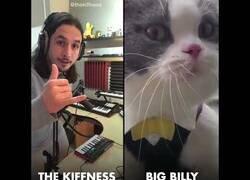 Enlace a Creando música a partir del maullido de un gato