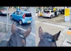 Enlace a Cuando todos hacen cola por gasolina, pero tú vas en caballo