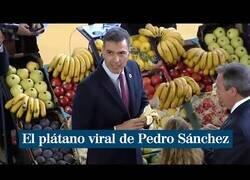 Enlace a Así es como el Presidente del Gobierno apoya a los canarios