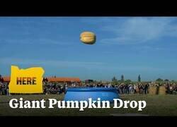 Enlace a Una calabaza gigante cae a una piscina desde 30 metros de altura