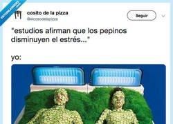Enlace a Necesito más PEPINOS MÁAAAAS PEPINOS, por @elcosodelapizza