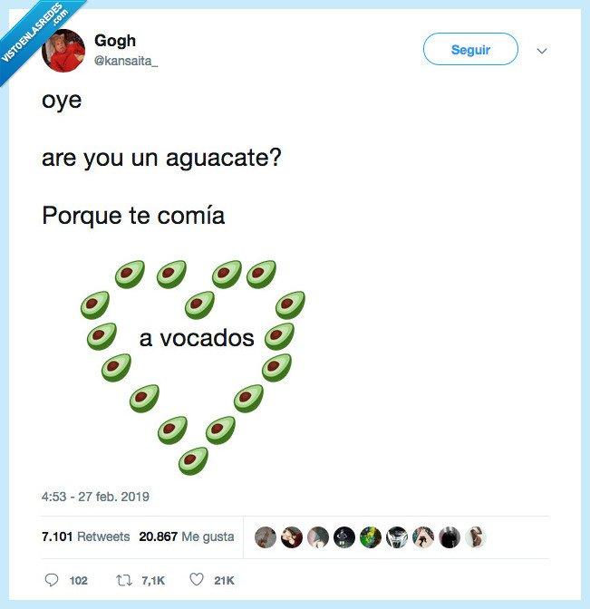 aguacate,avocado,comer,holipuli