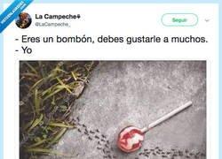 Enlace a Le gusto a ANA- A NADIE, por @LaCampeche_