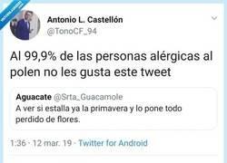 Enlace a ,Las flores y sus haters, por @TonoCF_94
