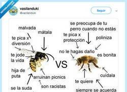 Enlace a Por si no tenéis claro que diferencia una abeja de una avispa, por @vacilanduki