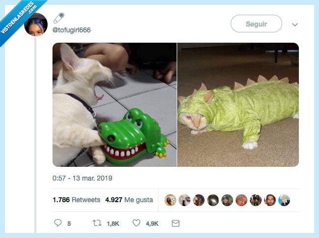 cococat,gato,la picaudra del cocodrilo,repetir