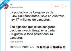 Enlace a Uruguay VS Canguros, por @HematxylinEosin