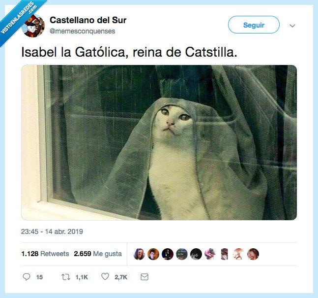 gatolicsmo,religion