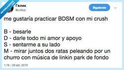 Enlace a El BDSM que a mí me gusta, por @LilXop