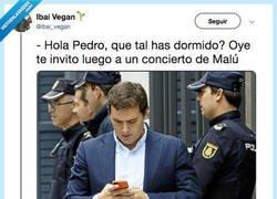 Enlace a El culebrón de Rivera y Sánchez explicado en memes, por @ibai_vegan