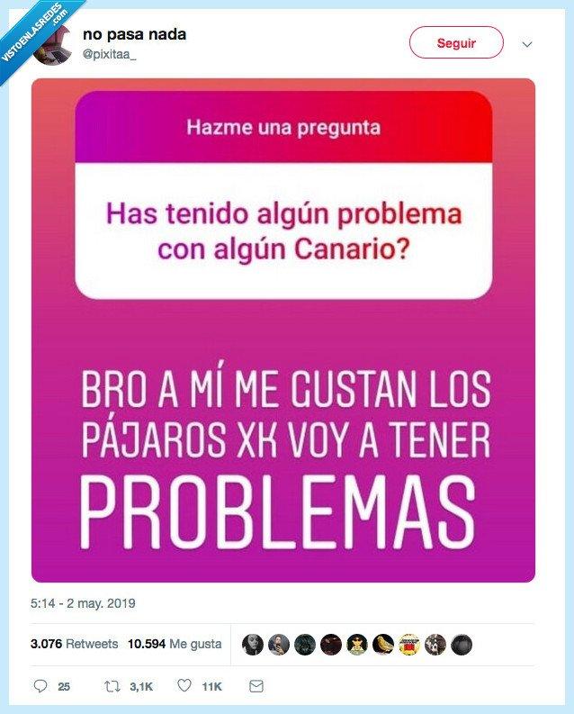 0,canarios,problemas