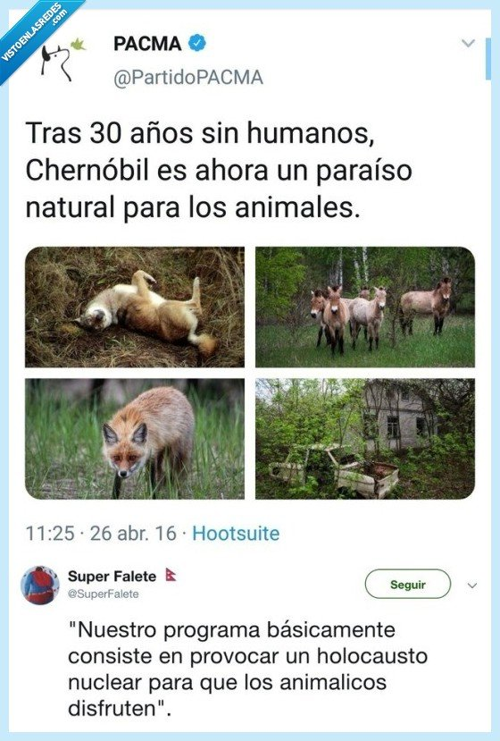 animales,chernobil,holocausto,nucelar,nuclear,pacma