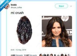 Enlace a Lo que me hace el crush, por @koala_coffee