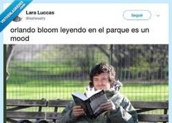 Enlace a Pillan a Orlando Bloom leyendo en un parque y nos representa en la vida, por @isshesalty