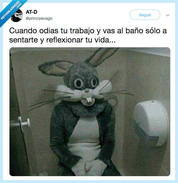 Bugs bunny,mi Vida,Odio,principevago,reflexión
