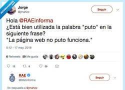 Enlace a La RAE enseña como utilizar el adverbio PUTO correctamente, por @RAEinforma