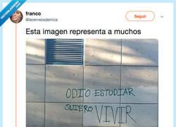 Enlace a QUÉ ACABEN YA LOS EXÁMENES, por @lacervezademica