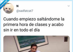 Enlace a Saltarse clases, por @sadfatcat7