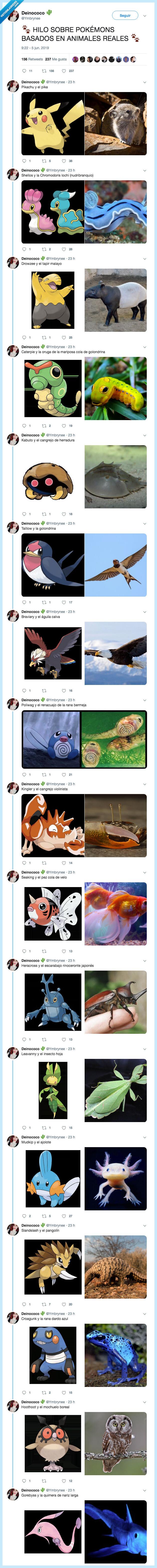 inspiración animal,pokemon