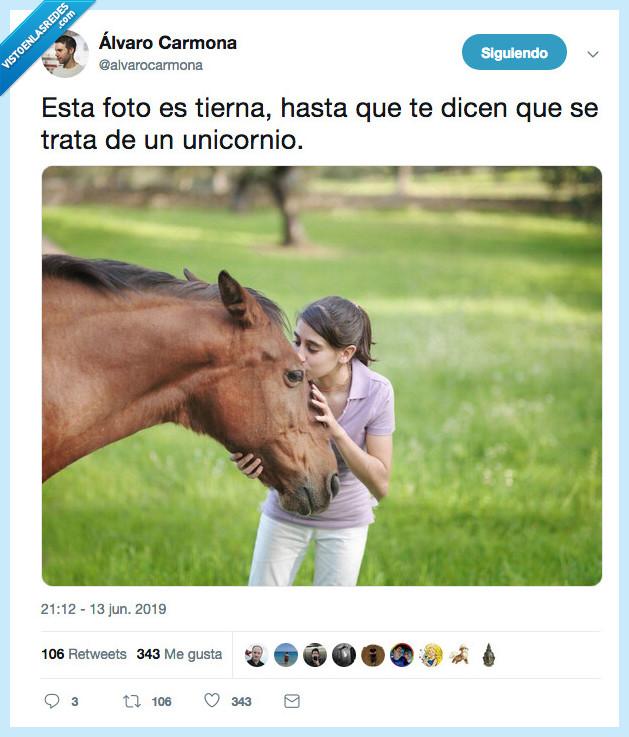 alvaro carmona,caballo,tierna foto,unicornio