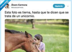 Enlace a Ahora no puedo evitar llorar cuando veo la foto, por @alvarocarmona