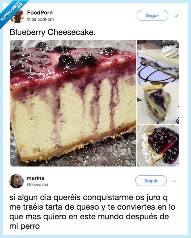 conquistar,paso sencillo,tarta de queso