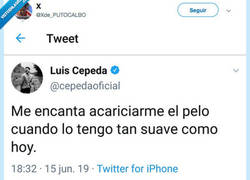 Enlace a Nos sacamos el sombrero ante esta reply al tuit de Cepeda...