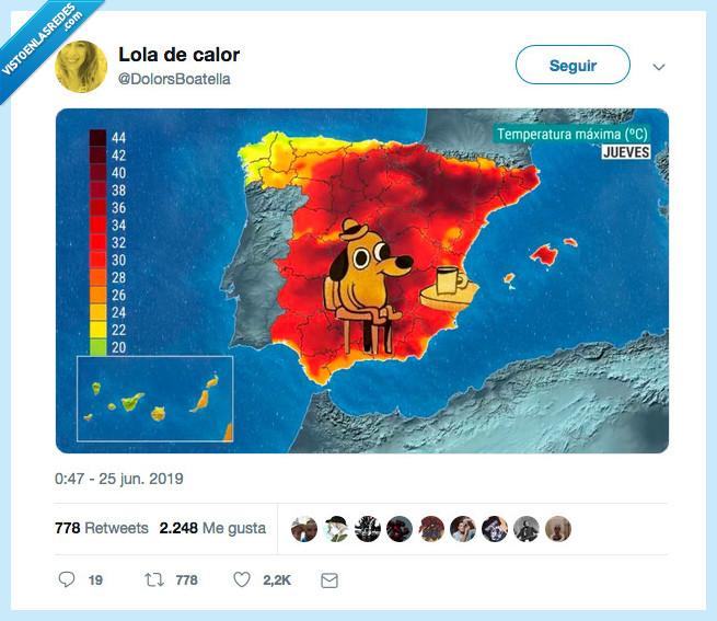 dolors boatella,it's fine,meme,ola de calor