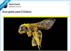 Enlace a Otra hostia para su ego del tamaño de Huesca, por @Aquel_Coche