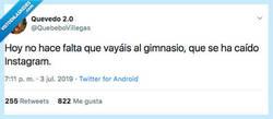 Enlace a Si no hay postureo no hay gimnasio, por @QuebeboVillegas