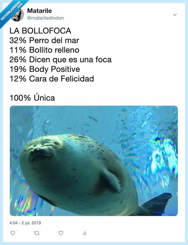 100x100unico,bollo,bollofoca,foca,MadeToBeUnique,Maxibon
