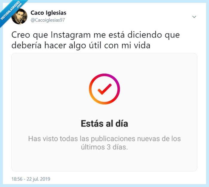 instagram,twitter,vida