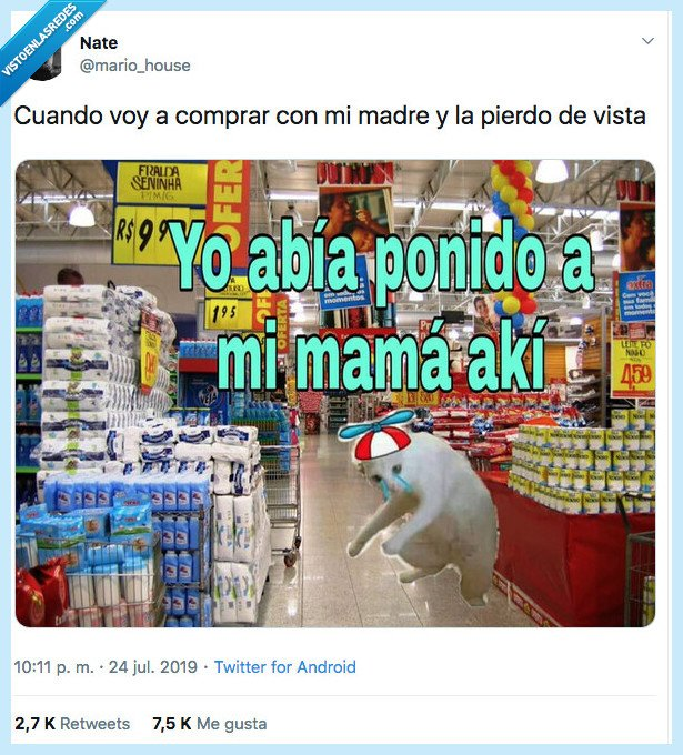gato,mama,perder,poner,supermercado