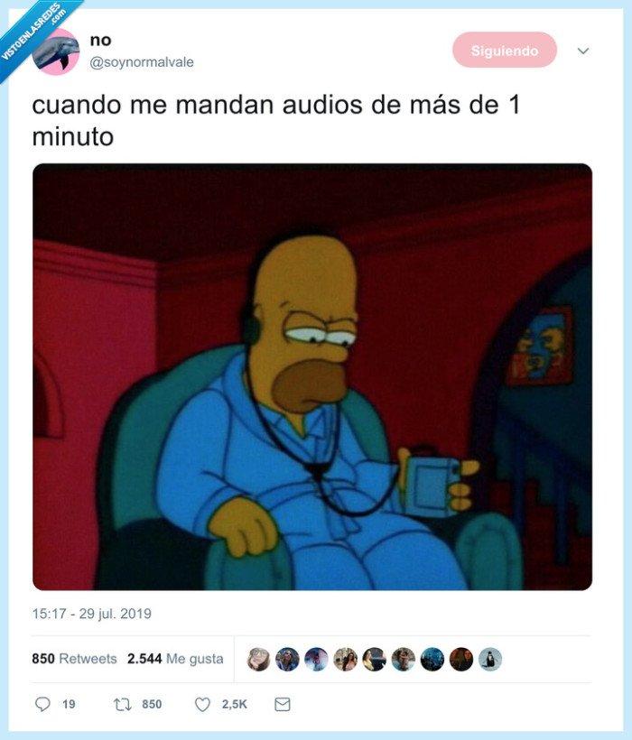 audio,whatsapp