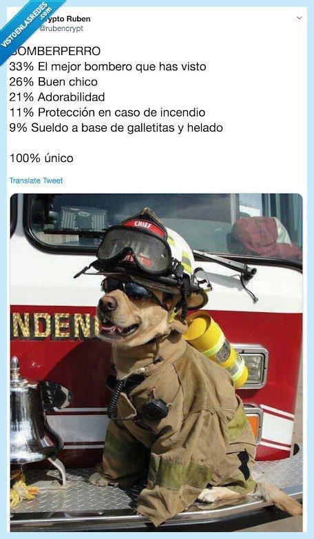 100x100unico,bombero,bomberperro,MadeToBeUnique,Maxibon,perro