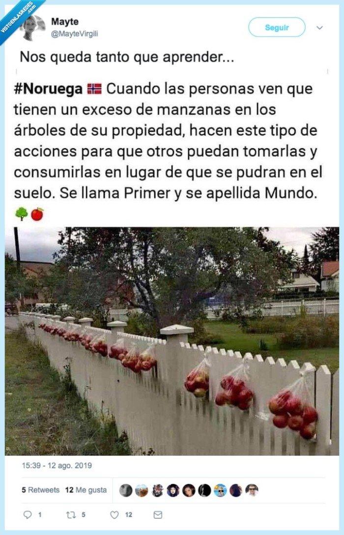 gratis,jardín,manzanas,regalo,valla