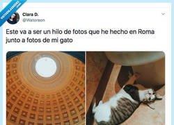 Enlace a Mezcla las fotos que ha hecho en Roma con las de su gato y el resultado es una maravilla, por @Watoreon