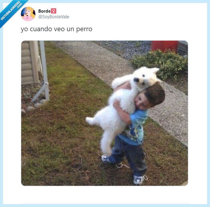 amigos,amor,familia,perros
